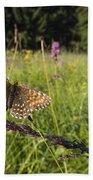 False Heath Fritillary In Meadow Bavaria Bath Towel