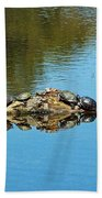 Family Of Turtles Bath Towel
