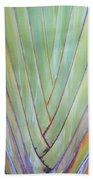 Fan Palm Abstract 2 Bath Towel