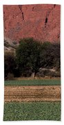 Farmer In Field In Northern Argentina Bath Towel
