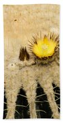 Fascinating Cactus Bloom - Soft And Fragile Among The Thorns Bath Towel