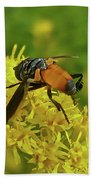 Feather-legged Fly On Goldenrod - Trichopoda Bath Towel