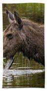Feeding Moose Bath Towel