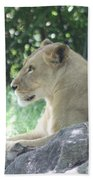 Female Lion On Guard Bath Towel