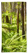 Fern Forest Bath Towel