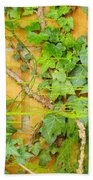 Ferns Vines And Lines 2am-112099 Bath Towel