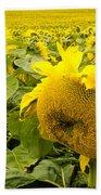 Field Of Blooming Yellow Sunflowers To Horizon Bath Towel