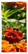 Field Of Marigolds Bath Towel