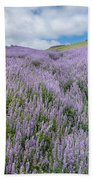 Fields Of Lupine 3 Bath Towel