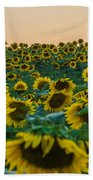 Fields Of Yellow  Hand Towel