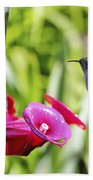 Fine Feathered Hummingbird Bath Towel