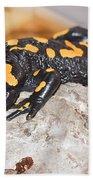 Fire Salamander Salamandra Salamandra Bath Towel
