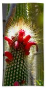 Firecracker Cacti Bath Towel
