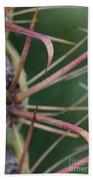 Fishhook Barrel Cactus Spines Bath Towel