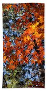 Flaming Maple Beneath The Pines Bath Towel