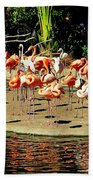 Flamingo Family Reunion Bath Towel