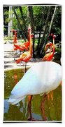 Flamingo Park Florida Bath Towel