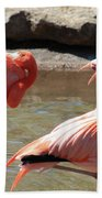 Flamingos Bath Towel