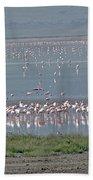 Flamingos On Lake Magadi Bath Towel