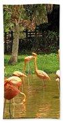 Flamingos Wading Bath Towel