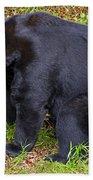 Florida Black Bear Bath Towel