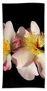 Flower Azalea. Bath Towel