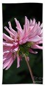Flower-pink Dahlia-bloom Bath Towel