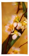 Flower - Sakura - A Touch Of Spring Hand Towel