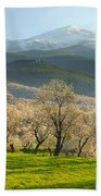 Flowering Almond At The Mountains Bath Towel