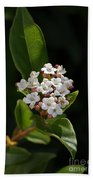 Flowers-tiny White Bath Towel