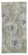 Fluffy Dandelions  Bath Towel