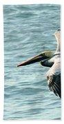 Flying Brown Pelican  Bath Towel