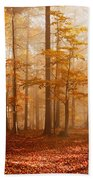Foggy Beech Forest Bath Towel