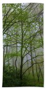 Foggy Woods Bath Towel
