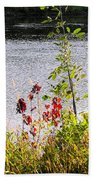 Foliage Along Iowa River Iowa City Ia Bath Towel