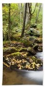 Forest And Stream Bath Towel