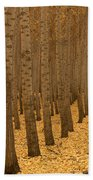 Forest Cathedral - One Bath Towel