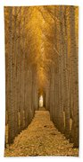 Forest Cathedral - Two Bath Towel