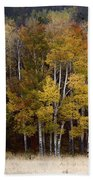 Forest Colors Hand Towel