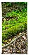 Forest Floor Gosnell Big Woods Bath Towel
