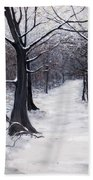 Forest Path In Winter Bath Towel
