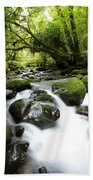 Forest Stream Hand Towel