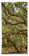 Forest Stroll - The Magical And Mysterious Trees Of The Los Osos Oak Reserve. Bath Towel