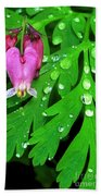 Formosa Bleeding Heart On Ferns Bath Towel