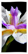 Fortnight Lily Hand Towel