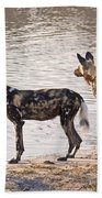 Four Alert African Wild Dogs Bath Towel