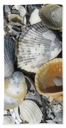 Four Beautiful Shells Bath Towel