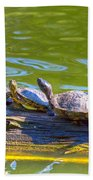 Four Turtles Bath Towel
