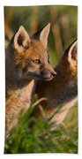Fox Cubs At Sunrise Bath Towel