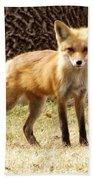 Foxy Momma Bath Towel